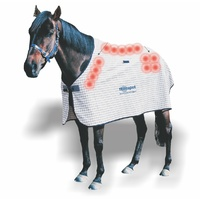 Dick Wicks Magnetic Horse Rug