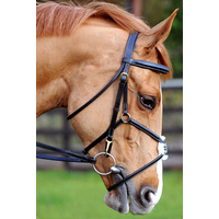 John Whitaker Super Deluxe Mexican Bridle