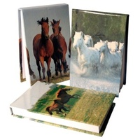 Herd of White Horses Small Note Book