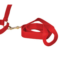 Christmas Lead Rope