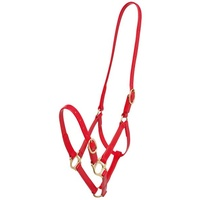 Zilco 19mm PN Headstall - Pony Red