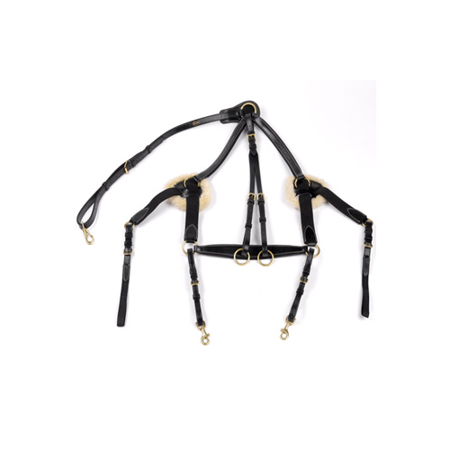 John Whitaker 5 Point Breastplate